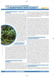 cover-infoblatt19-agroforstwirtschaft-inkota.jpg