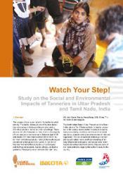 inkota_cys_factsheet_watch_your_step_india_eng.jpg